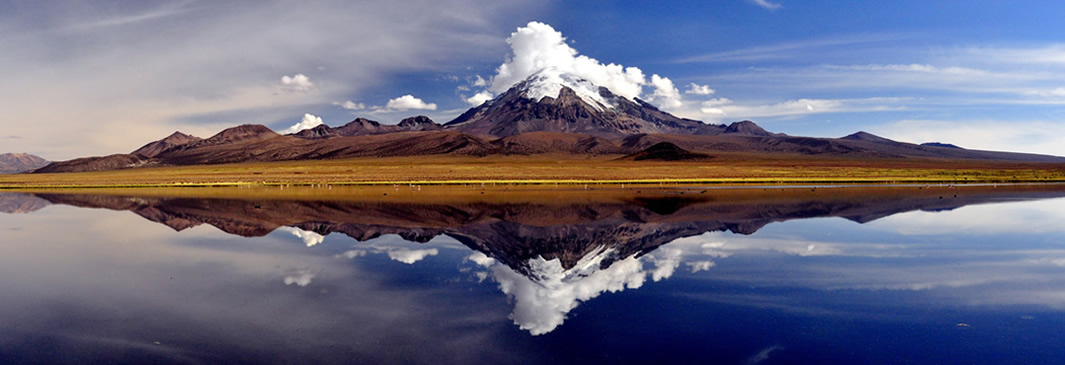 NATIONAL PARK OF SAJAMA,TURISMO BOLIVIA – PERU