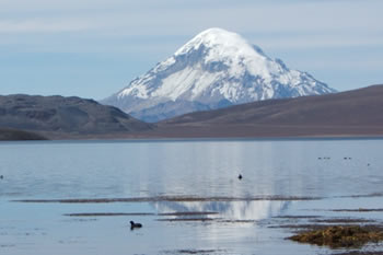 userfiles/image/tours bolivia/Tour_to_Sajama_National_Park_of_Lauca_Bolivia_Chile_3D_2N/