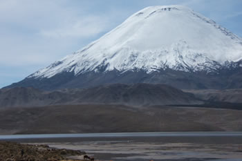 userfiles/image/tours bolivia/Tour_to_the_National_Park_of_Sajama_3D_2N/