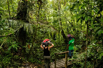 userfiles/image/tours peru/tambopata_expeditions/